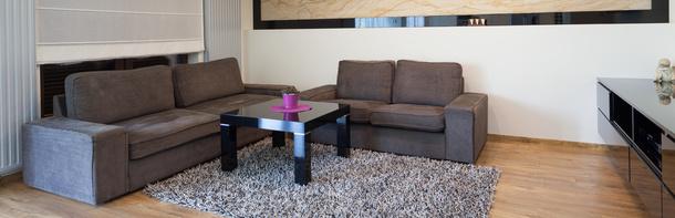 Teppich und Laminat saugen